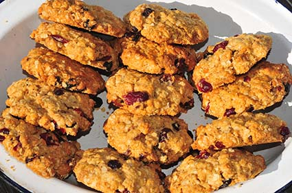 Recipes for oats biscuits