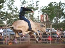 thargomindah channel country rodeo challenge